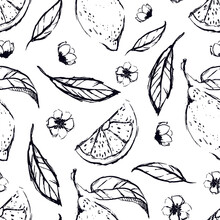 Lemon Hand Draw Seamless Pattern Background Wallpaper. Cute Seamless Pattern With Lemons. Vector Seamless Pattern With Lemon, Leaves And Flower. Citrus Line Seamless Background.