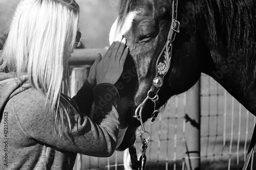Fotografie, Tablou Compassion and kindness between woman and pet horse for companion animal therapy concept in black and white