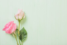 Two Pink Roses On Green Wooden Background