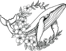 Hand Drawn Whale With Sakura Flower.Cherry Blossom In Circle With Big Fish Design For Tattoo.Whale Tattoo For Women Isolate On White.