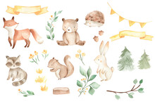 Woodland Animals Watercolor Illustration Baby Bear Fox Squirrel Bunny