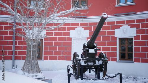 Obraz na plátne Antique cannon