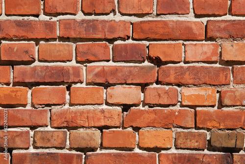 Fototapeta premium Cegły