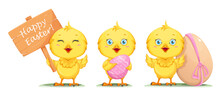 Cute Little Chick, Set Of Three Poses