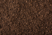 Peat Moss Soil Texture Background
