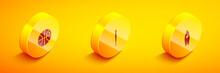 Set Isometric Basketball Ball, Baseball Bat And Surfboard Icon. Vector