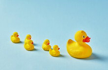 Mother Rubber Duck And Ducklings