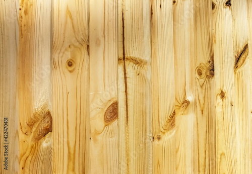 Obraz Background of pine planks standing vertically in a row close-up - fototapety do salonu