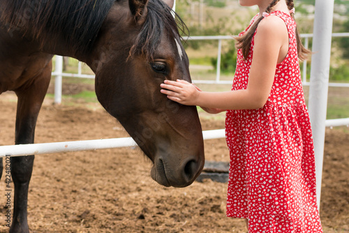 Fototapeta Side view of child girl petting horse at ranch