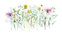 Watercolor Flying Bee, Natural Field Flowers, Beautiful Floral Composition Isolated On White, Macro. Summer Meadow. Summer Symbol For Holiday, Postcard, Poster, Banner, Children's Illustration And Web