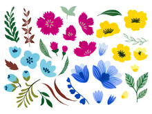Watercolor Illustration Botanical Leaves Collection Foliage Abstract Gebera Starburst Cosmos Flower Leaves Elements