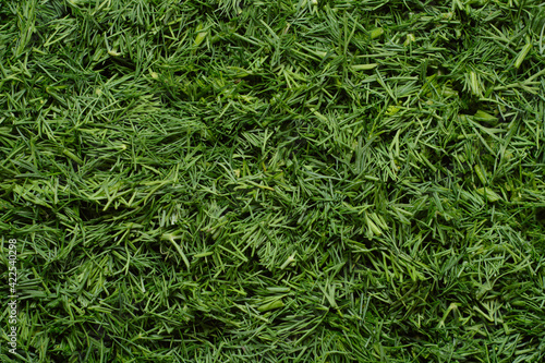 Foto Background from cut green fresh dill