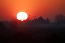 Sunrise In The Venice Lagoon