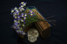 Still Life With Human Skull And Retro Book And Dry Flowers  On Black Background.