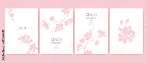 Платно Set of spring backgrouds with sakura branch