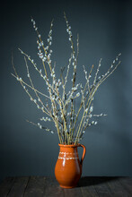 Grey Pussy Willow Twigs Arranged In Rustical Traditional Ceramic Jug On  Blue Background Easter Decoration With Grey Pussy Willow Twigs Arrangement-2