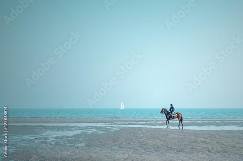 Obraz na plátně horses galloping by the sea
