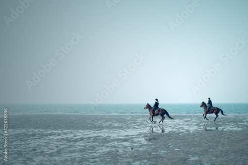Fotografie, Obraz horses galloping by the sea