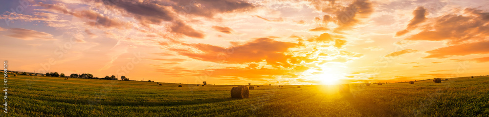 Obraz Sunset in a field with haystacks on a summer or early autumn evening with a cloudy sky in the background. Procurement of animal feed in agriculture. fototapeta, plakat