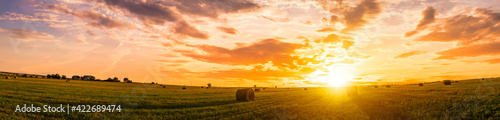 Fototapeta Sunset in a field with haystacks on a summer or early autumn evening with a cloudy sky in the background. Procurement of animal feed in agriculture. obraz