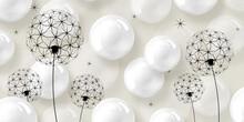Best 3d White Background, Shiny Bubbles, Black Dandelions, 3d Illustration