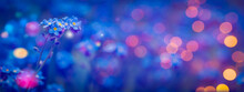 Beautiful Abstract Background With Spring Flowers