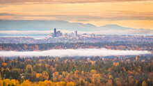 Seattle Ranked 15th Largest City In USA And One Of The Top 5 Fastest Growing Cities In USA.