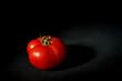 dojrzały czerwony pomidor na czarnym tle