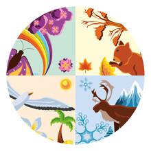 Landscape Four Seasons