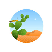 Yellow Locust Insect In Desert Isolated Concept