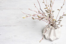 Sprig Of Willow On Old White Wooden Boards Background