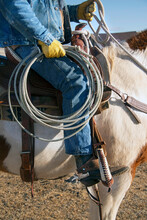 Cowboy Wrangler Riding Paint Horse With Saddle, Boots And Spurs Carrying A Lariat Rope