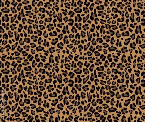 Billede på lærred Loepard vector pattern, seamless trendy background, cat print