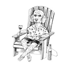 Poodle Sketch On Adirondack Chair