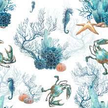Watercolor Coral Reef Seamless Pattern. Hand Drawn Realistic Background Design: Star Fish, Corals, Sea Horse On White Background. Natural Repeating Texture Design For Paper, Fabric, Wallpaper