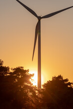 Wind Turbine Jutting Out Of A Forest With The Sun Behind It During A Warm Sunset