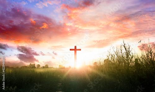 Obraz na plátně Christ Jesus concept: cross in the morning at sunrise
