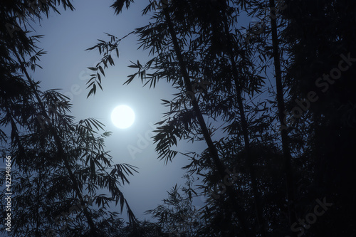 Tela A bright moon on the clear dark blue sky and silhouette black shadow of bamboos
