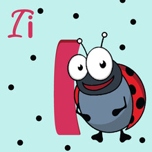 Alphabet Letter I, I For Insect . ABC TO Z , Colorful Animal Alphabet Letter I With  Insect.