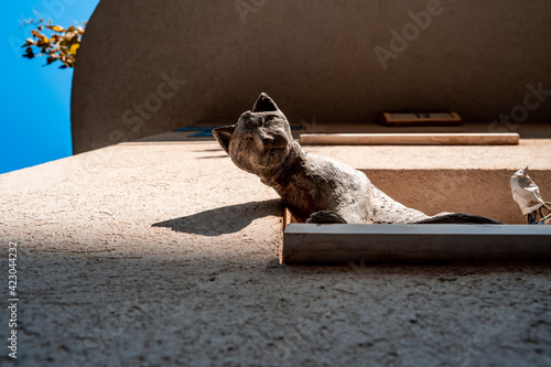 clay statue of a cat stands on the windowsill and looks down Wallpaper Mural