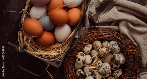 Fototapeta Easter eggs in nest on grey background. Easter background with eggs and spring flowers. Top view with copy space. obraz