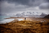 Back view of anonymous explorer standing on dry hill and admiring view of snowy mountains and frozen water of sea on cloudy day in winter in Norway
