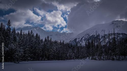 Fototapeta Tatry - Smreczyński Staw w Dolinie Kościeliskiej zimą obraz