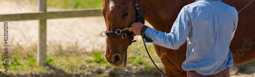 Photographie 乗馬クラブの馬と調教師の様子