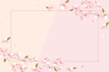 Vector Background Illustration With Cherry Blossom Flowers