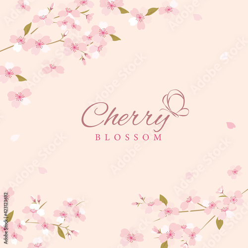 Vector background illustration with cherry blossom flowers Fotobehang