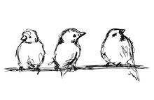 Vector Ink Sketch Of Three Little Birds On A Branch