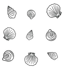 Seamless Vector Pattern From Various Sea Shells. Background From Black And White Outline Seashells On A White Background. Pattern For Textile, Print, Poster, Menu.