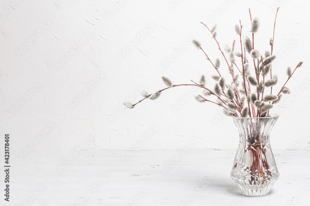 Fototapeta Sprig of willow on old white wooden boards background