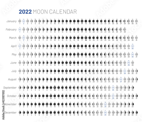 Fototapeta Moon lunar calendar monthly cycle planner design. 2022 year astrological calendar banner, poster, card editable template, moon schedule on white background vector illustration obraz